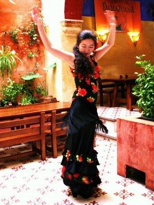 Flamenco en Rama