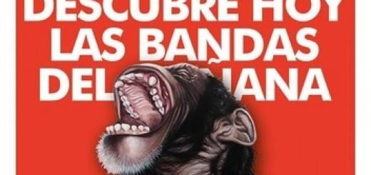 Festival Monkey Week 2015