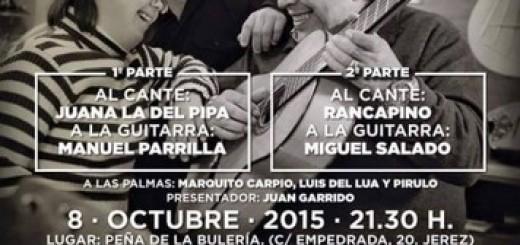 El 8 de octubre se celebra una Noche Flamenca a beneficio de CEDOWN